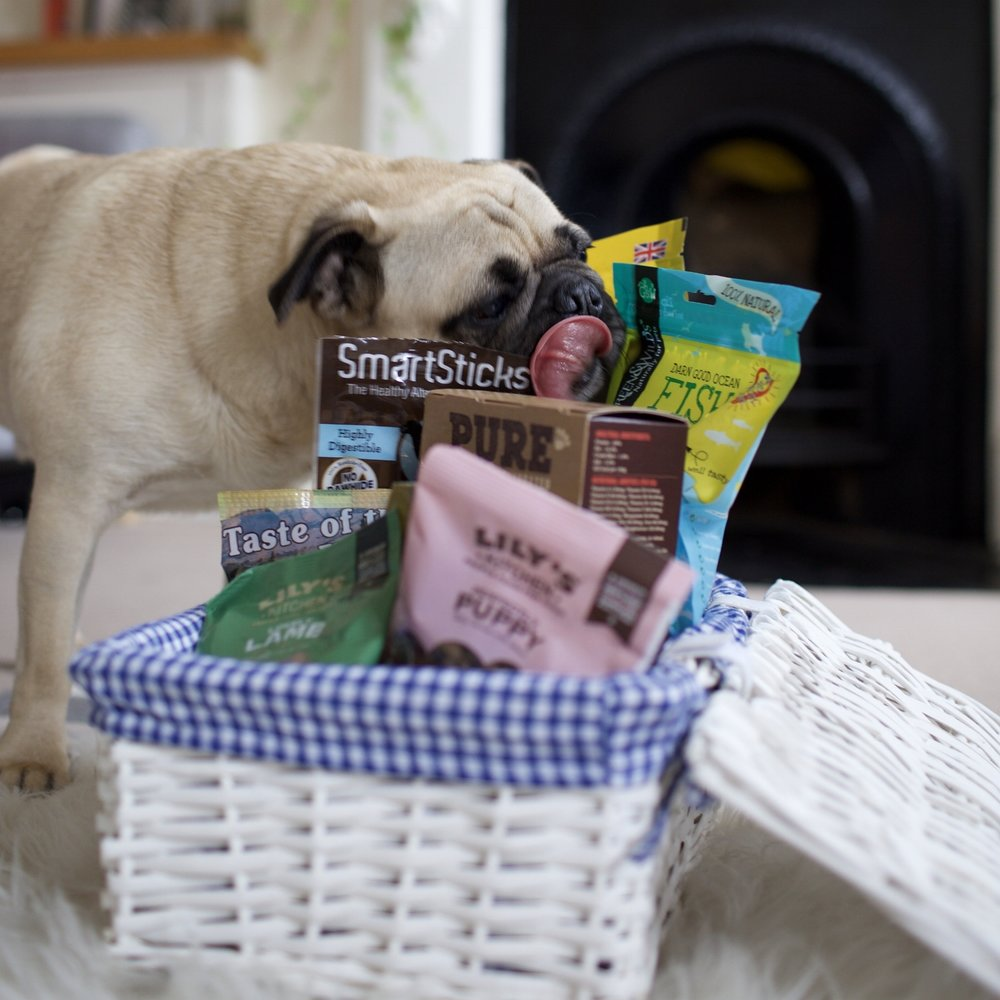 Barkers-healthytreatsfordogs-dognutrition-londondogs-pug-foodfordogs-doghealth-lilyskitchen-doggytreats-delicioustreatsfordogs-nutritousdogtreats-puppy-puppytreats 1