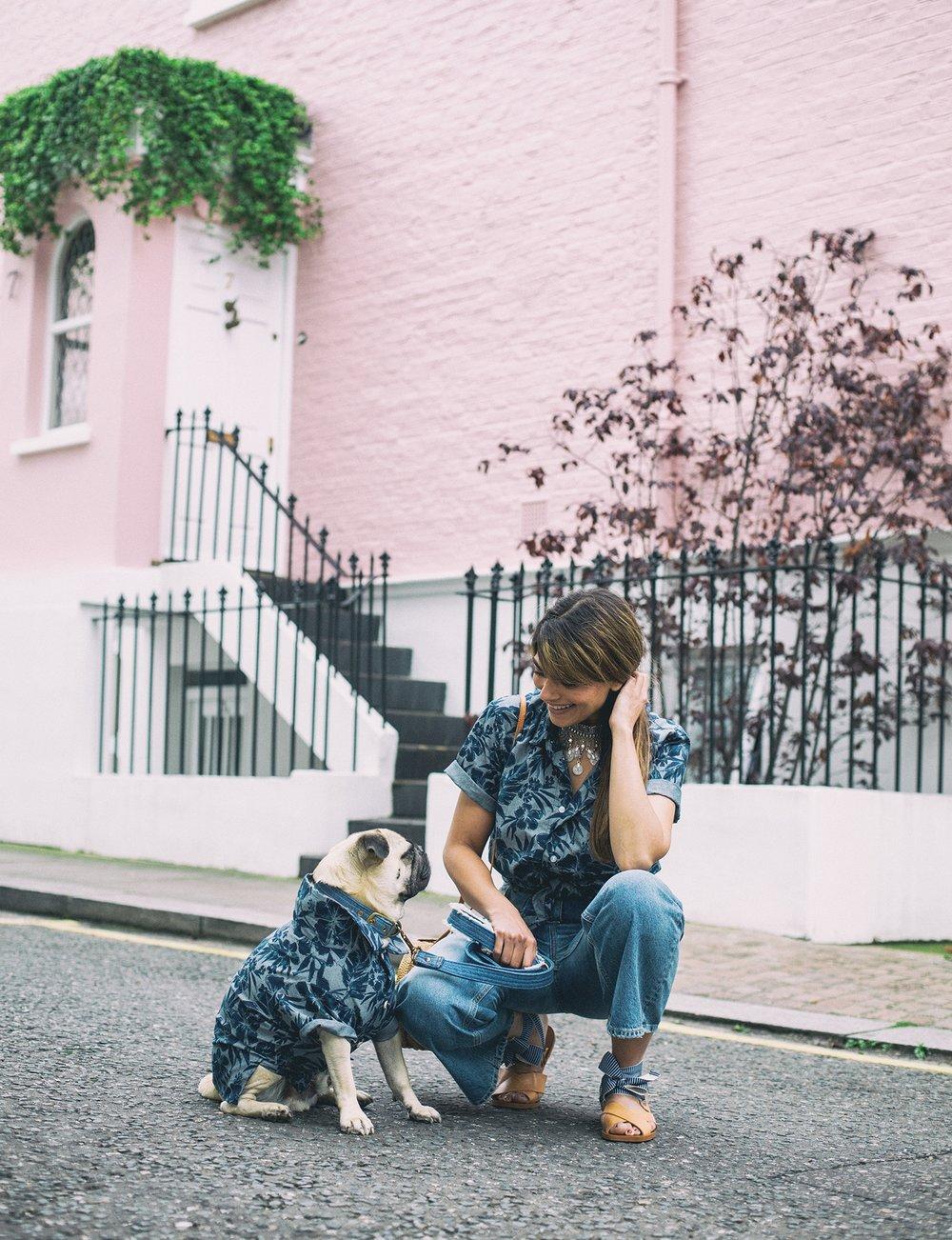 honeyidressedthepug-dogblog-dogfashionblog-petfashionblog-london-nottinghill-humanandhound-fashion-twinning-best-top-doglifestyleblog-pupfashion-petblogger-dogsinclothes-matchingwithyourdog-dogmomblog-dogmomstyle-furmomblog-fashionblog-ariandm 23.jpg
