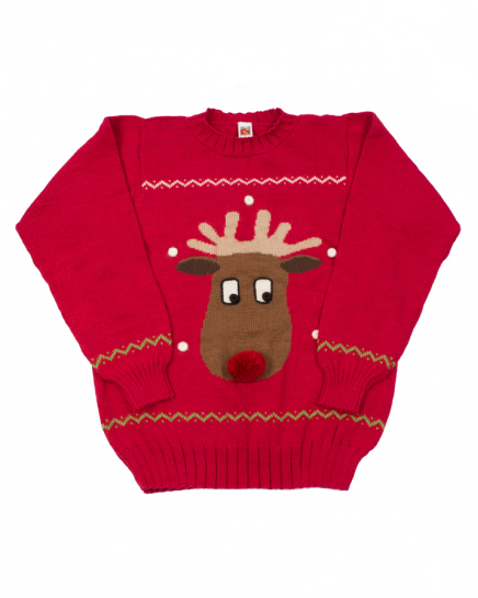 holiday dog sweater-matching-dog-and-mom-holiday-sweaters9.jpg