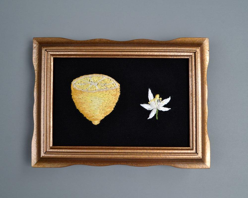 Lemon Fruit and Blossom, 2017