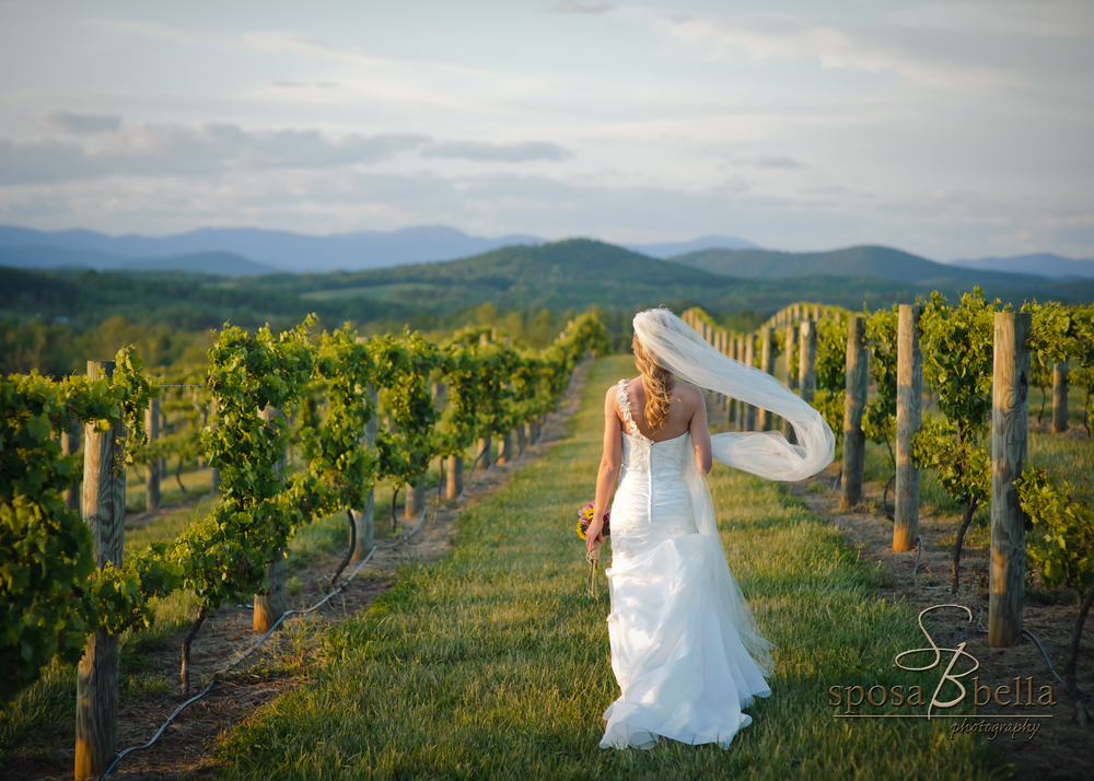 Chattooga Belle Farm | Wedding Venue | Bespoken www.bepsokenweddings.com
