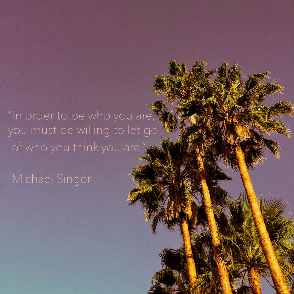 michael singer quote