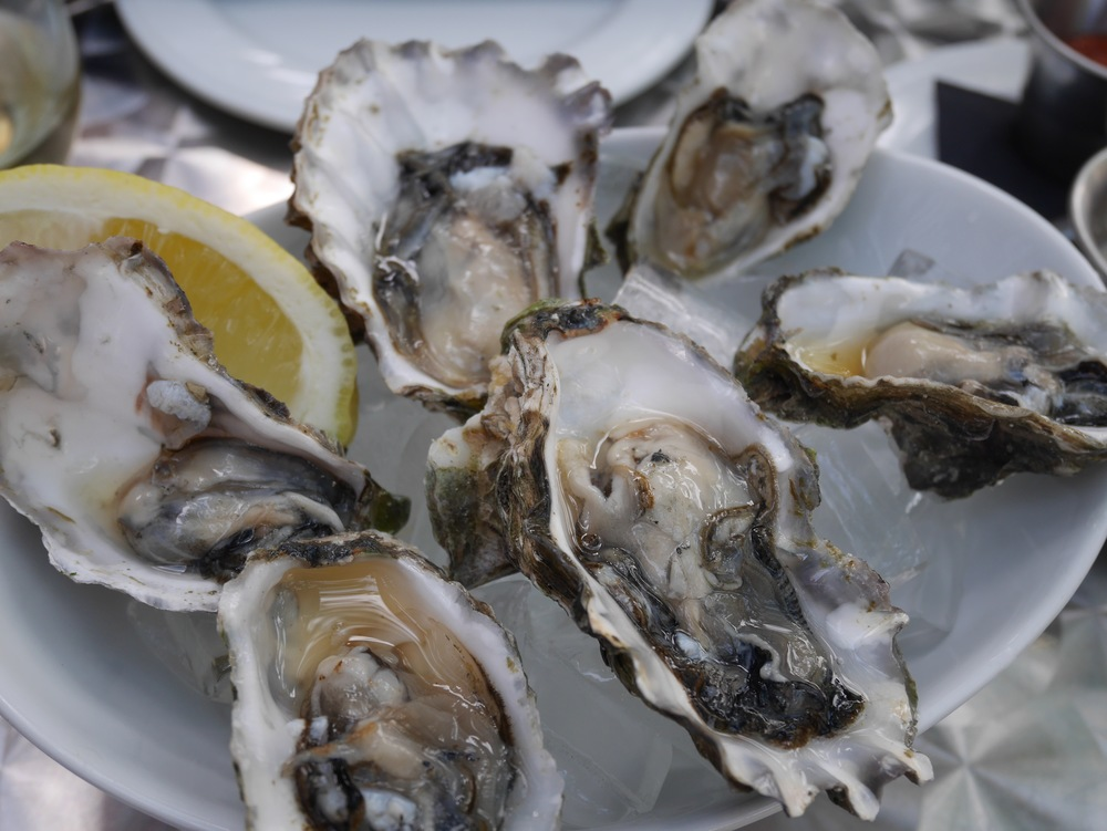 Sweet west coast Oysters at Back Pearl