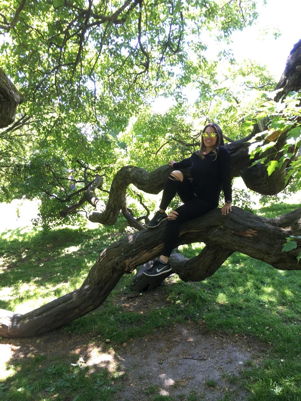 Taryn in the tree in the university botanical garden