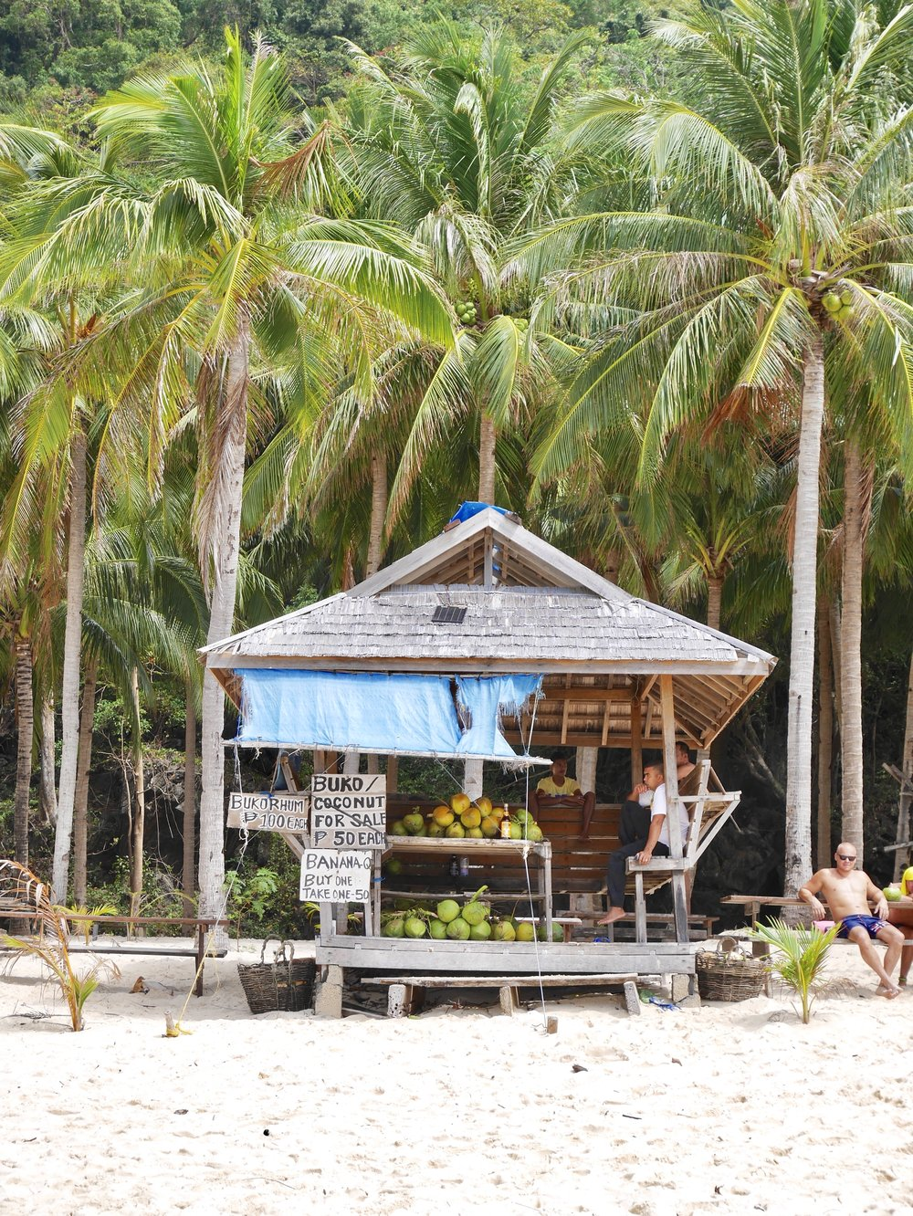 coconut hut.jpg