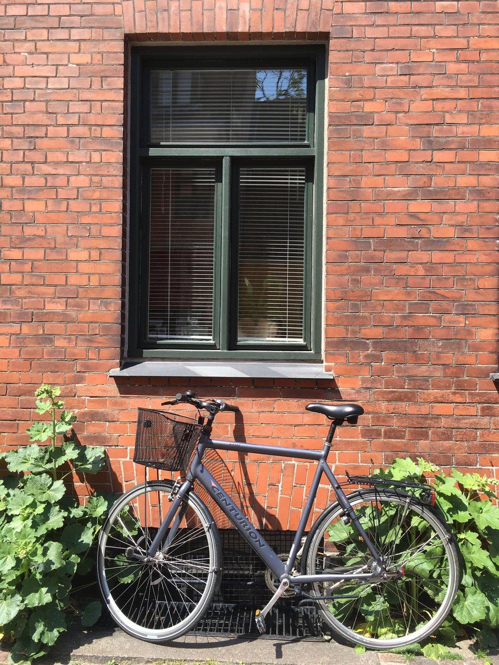Cities like Copenhagen make bike riding a cinch