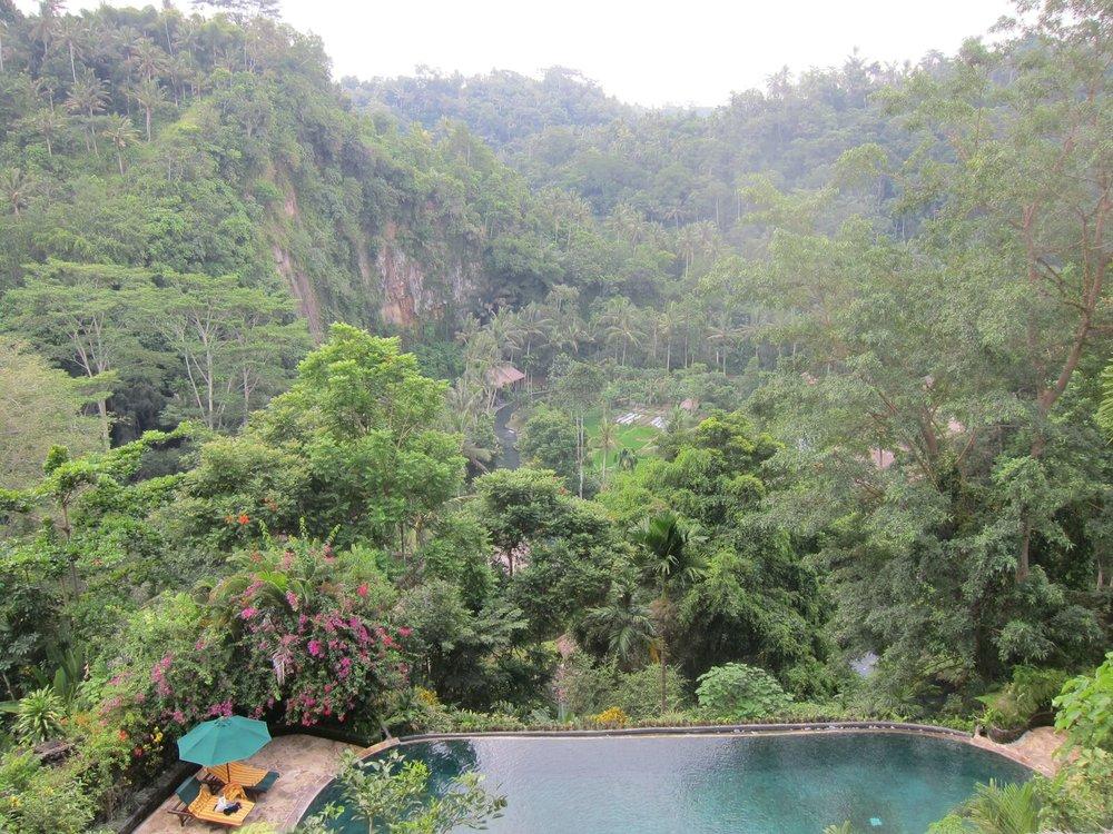 Bali retreat - 167.jpg