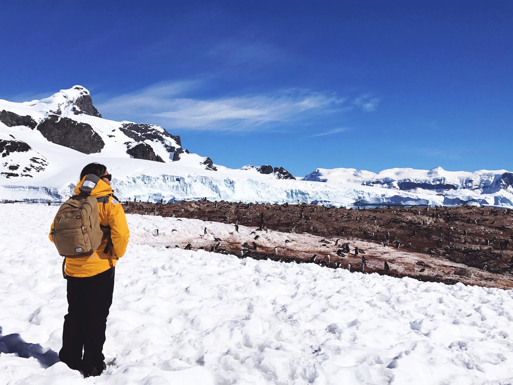a fellow Antarctic traveler snapped this one