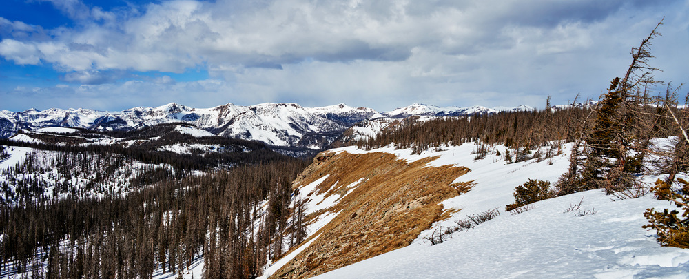 wolf creek backside.jpg