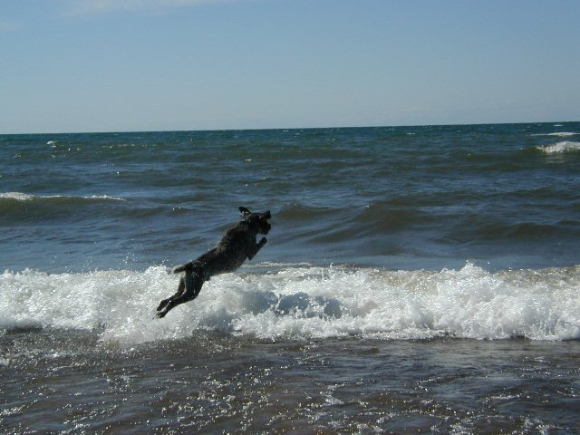 Tim Hauser's Kessler (GWP) jumping into the Lake Superior surf