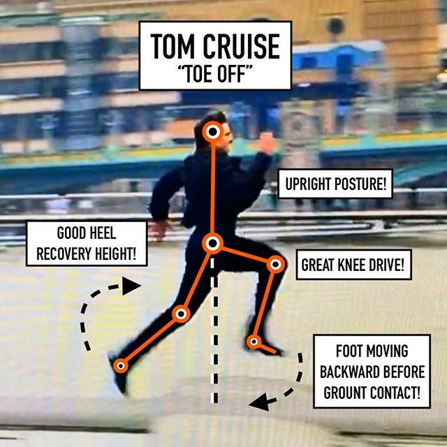 @tomcruise has been running in movies since I was born in 1981. Got to watch the latest Mission Impossible this weekend and had to record my favorite scene of the movie! Epic sprinting scene! Tom is 56 years old and look at him run! ⁣ ⁣ ▪️So I had to break down his mechanics and he only has a couple things he could work on...no offense Tom. He's a little flat footed at ground contact. This is going to result in a longer ground contact time. If I were him I would do a little more plyos in his training to help with his ability to spring off the balls of his feet and get a little more vertical displacement. This change and increased top end speed might make his last second heroics a little bit less last second.⁣ ⁣ ▪️Now in his defense, he has been sprinting full go for at least a couple minutes at this point, so it's amazing that he can still maintain his mechanics! ⁣ ⁣ ▪️Hats off to you Mr. Cruise! Keep on sprinting and never stop.