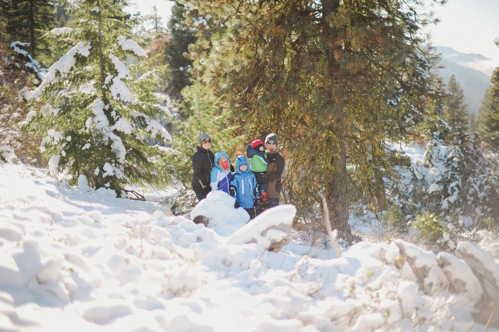 Adamson Tree Hunting 12.jpg