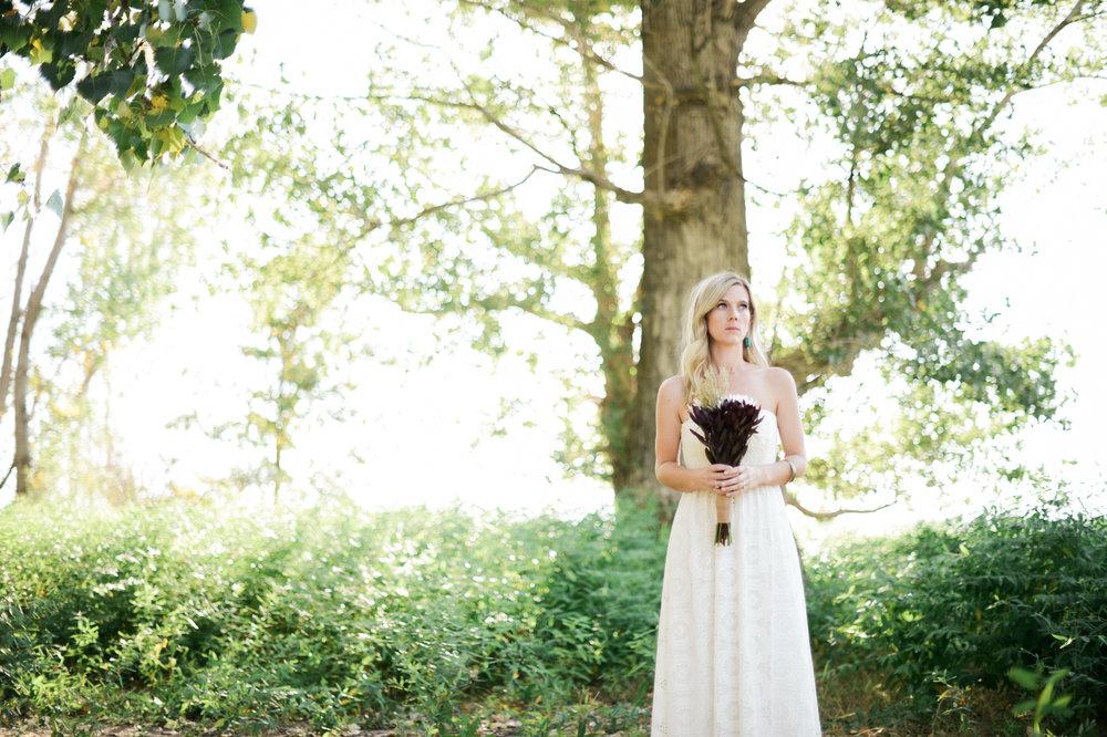 Lindsey Portfolio 24.jpg