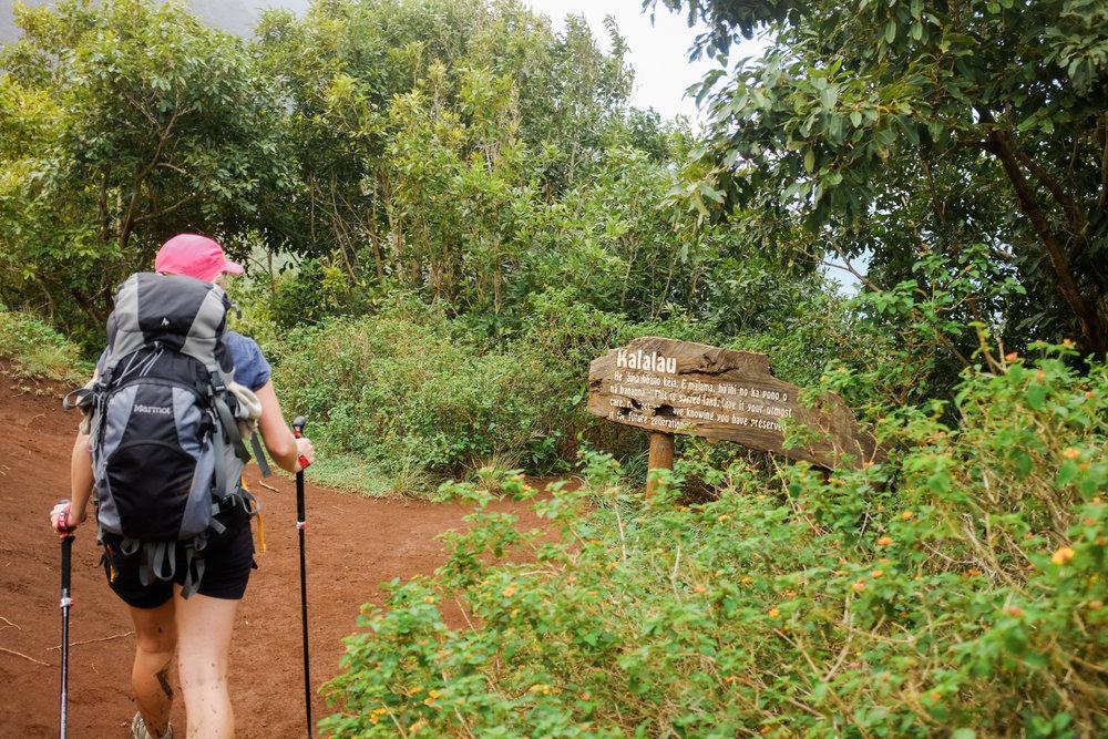 Ben+Joella | Kauai Snapshots Blog 14.jpg