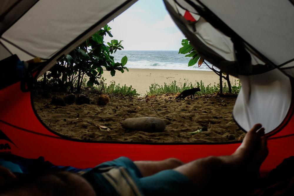 Ben+Joella | Kauai Snapshots Blog 22.jpg