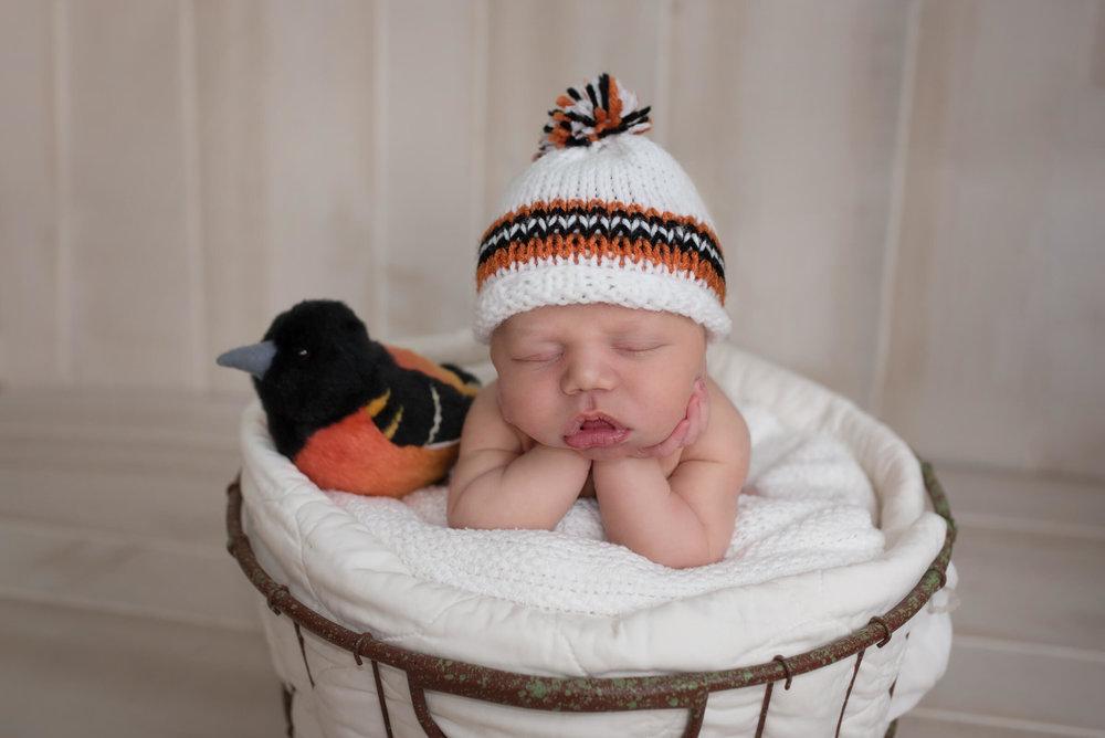 best baby photographer Hagerstown MD. Baltimore Oriel baby