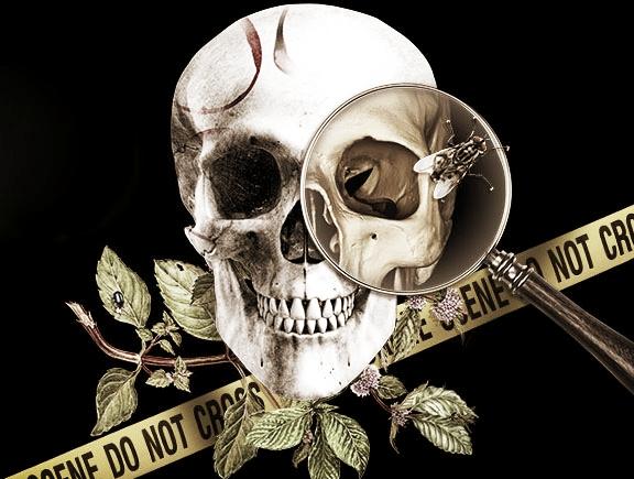 crime-scene-live-calendar.jpg
