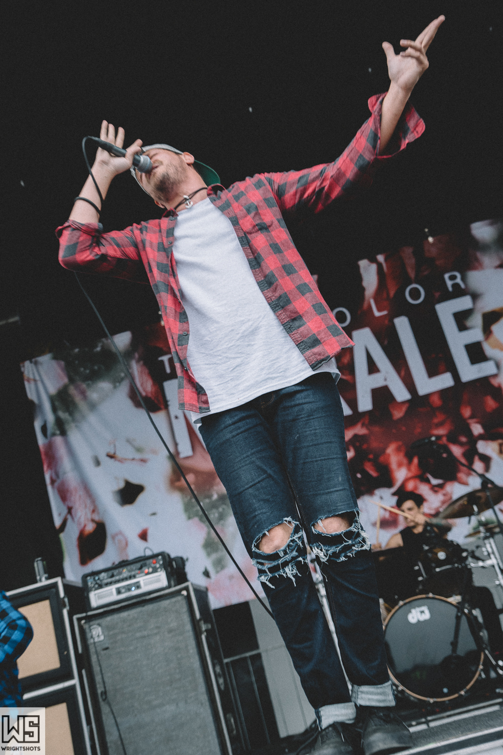 The Color Morale-27.jpg