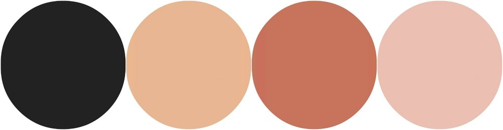 black and blush color palette