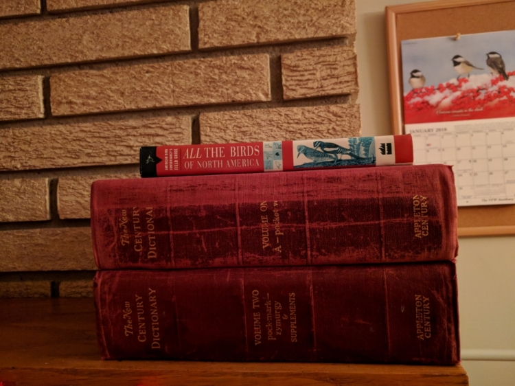 dictionaries.jpg