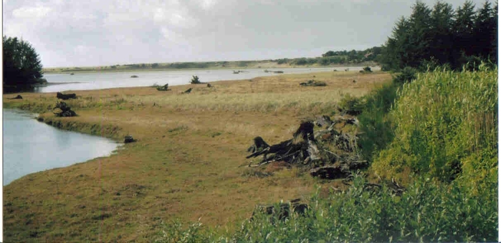 Neawanna Point, north of Seaside, the site for display of a bronze honoring Wilbur E. Ternyik.