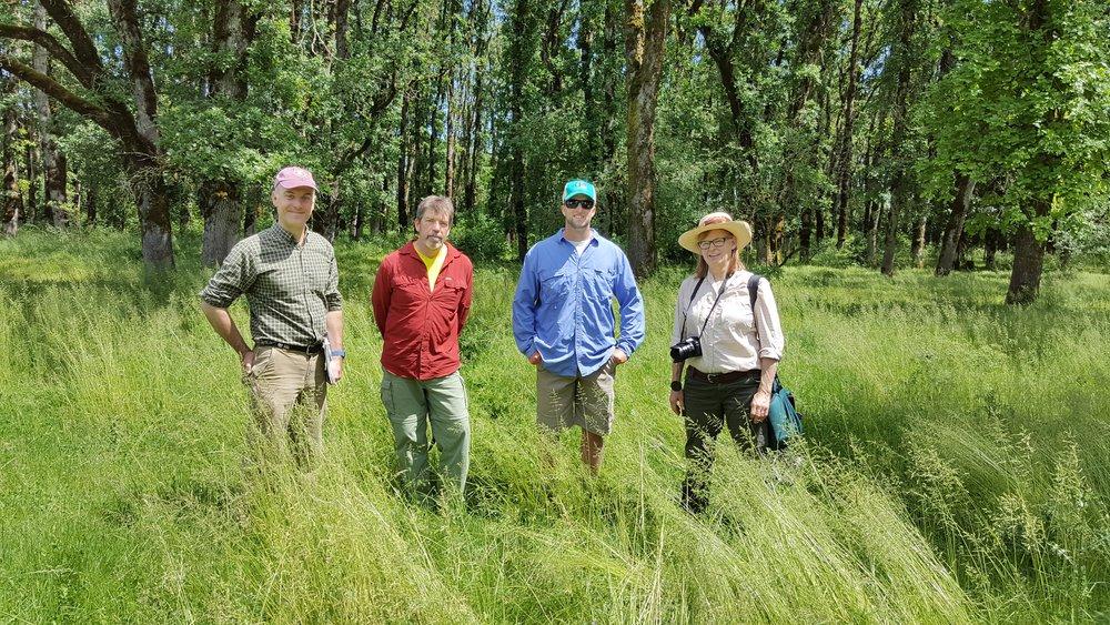 May 31, 2017 -- Planning for the Audubon Society of Portland Eclipse Event, Nick Hardigg, Executive Director; Mark Fitzsimons, Birdathon Coordinator; Luke Fitzpatrick, The Bridges Foundation, and Jane Hartline, Eclipse Event Coordinator