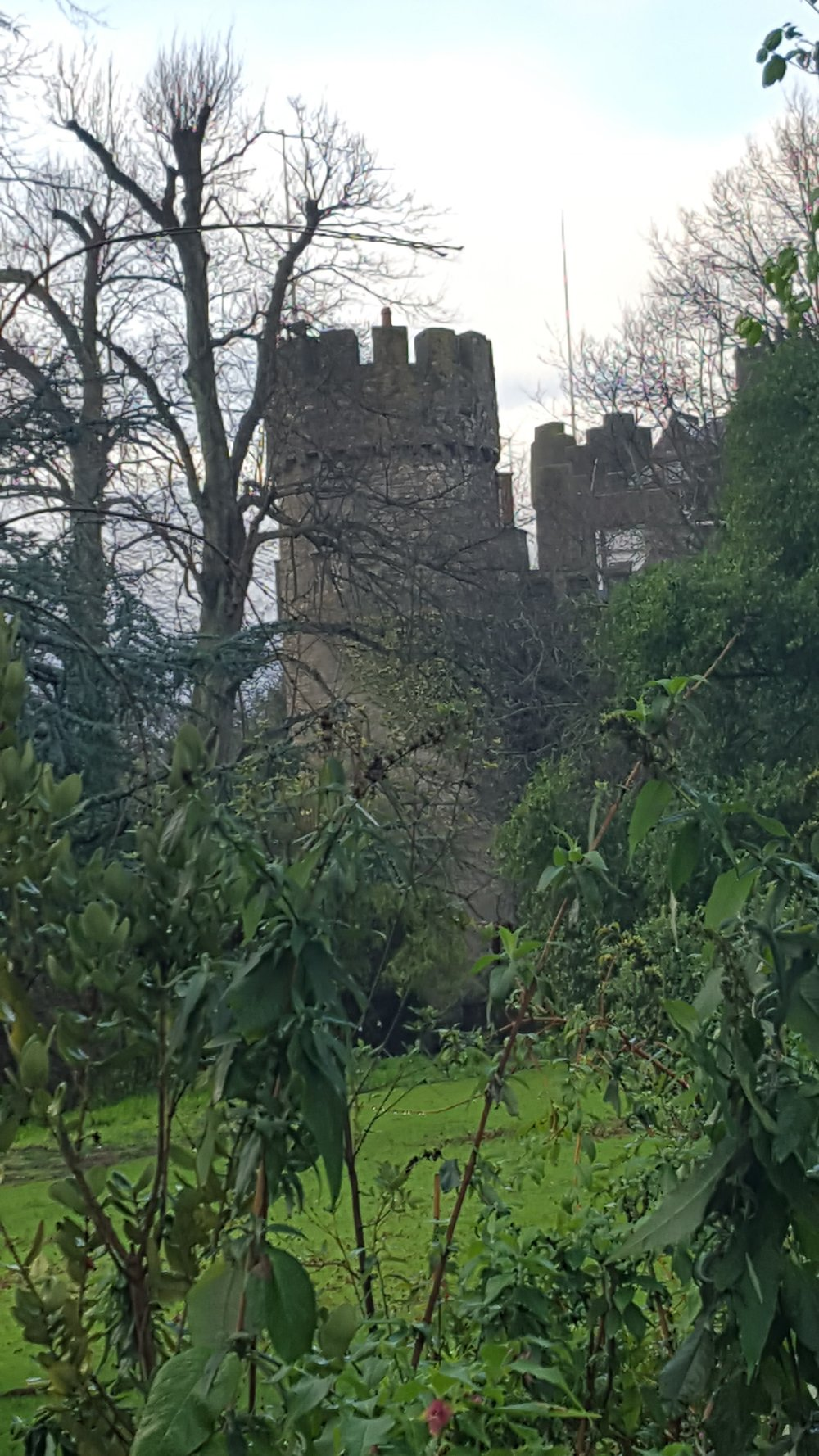A turret behind the trees. Malahide Castle.