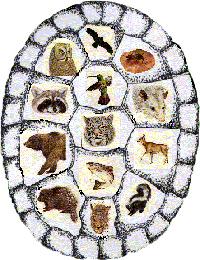 Medicine-Mammals200.jpg