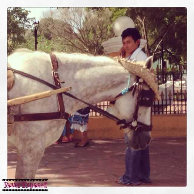 this is pretty much the only photo I snapped in Valladolid – el caballo con el sombrero pequeno