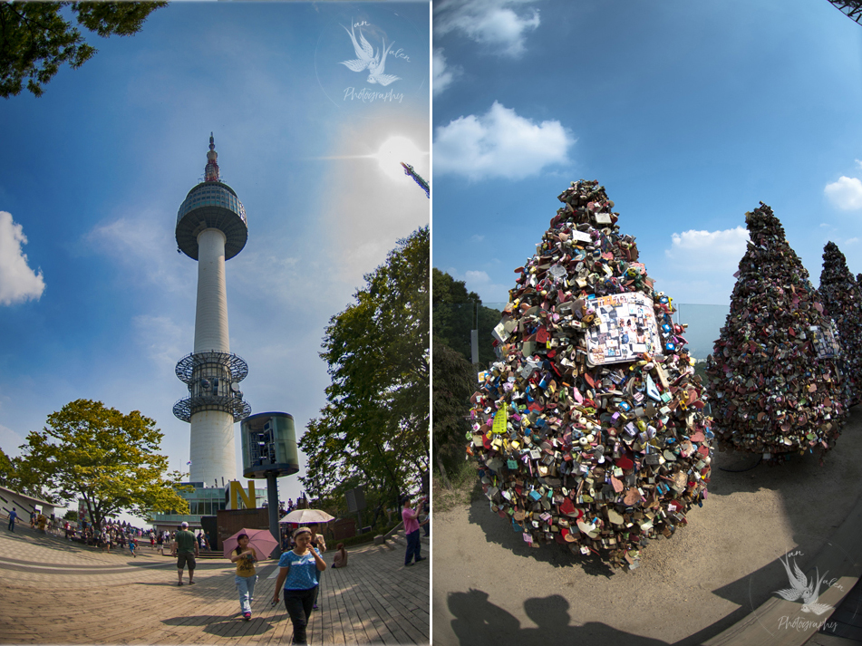 the park around N Seoul Tower
