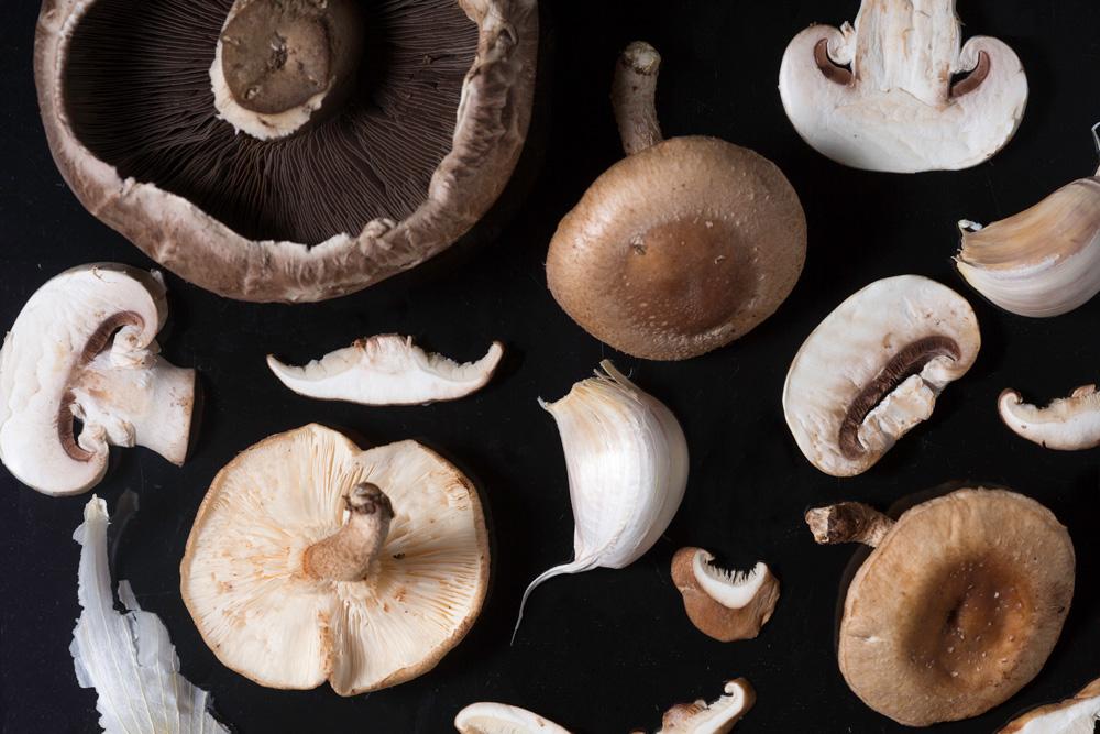mushrooms1.jpg