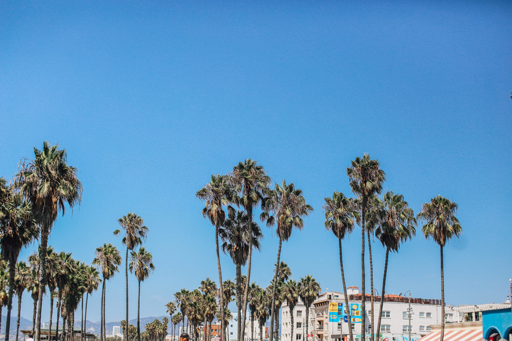 cupofcouple-viaje_los_angeles-venice_beach-0009.jpg
