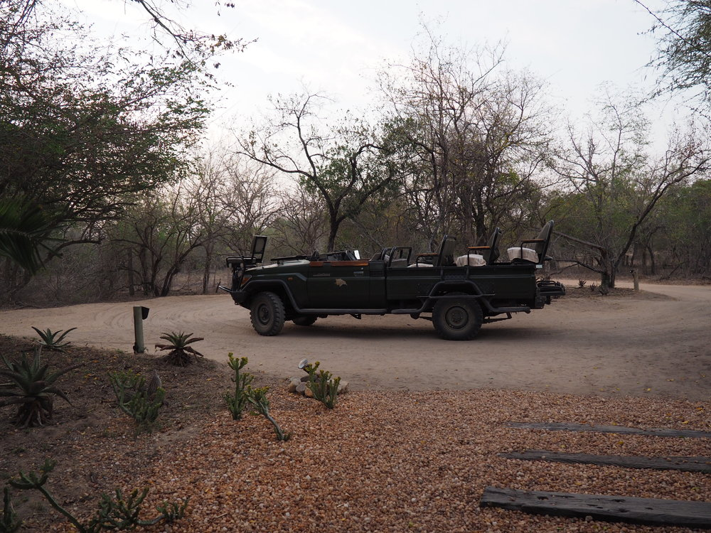 TB safari car.JPG