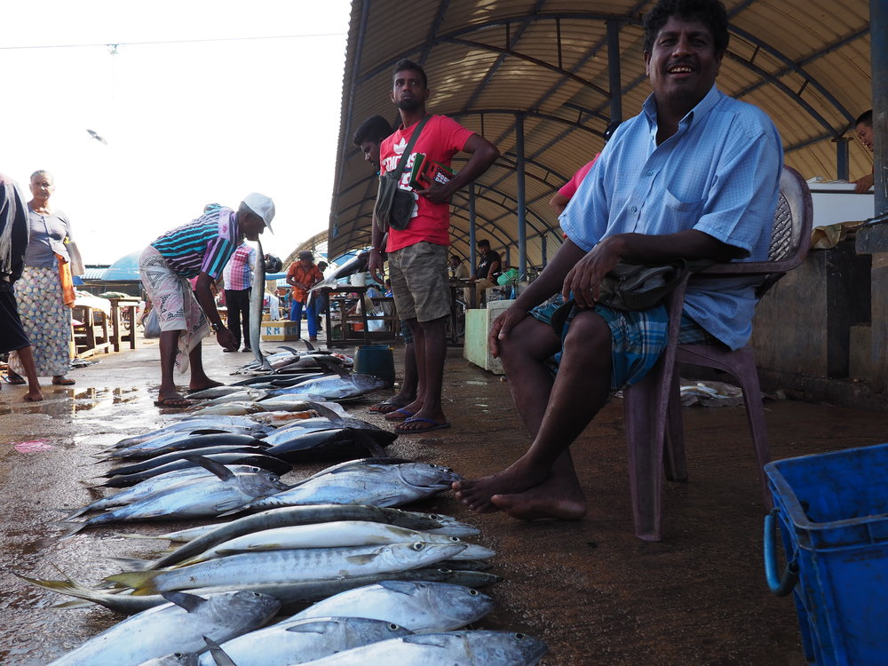 Negombo fish market with seller.JPG