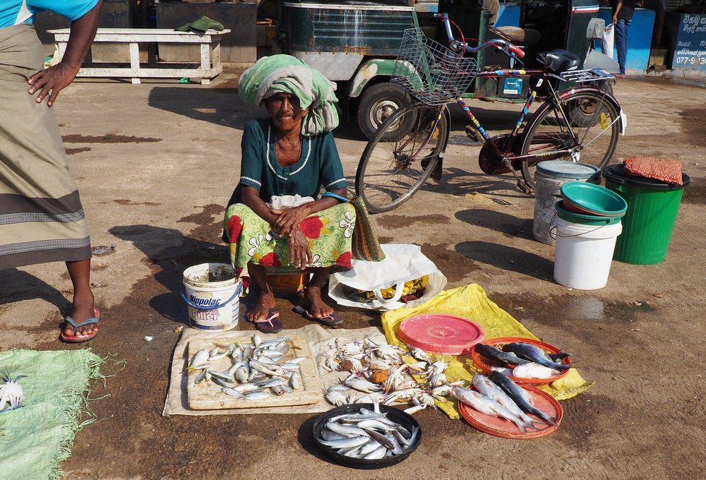Negombo fish marlet lady 2.JPG