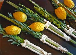 The Lulav and Etrog are the main parts of the Four Species used during Sukkot. (courtesy  BJSD )