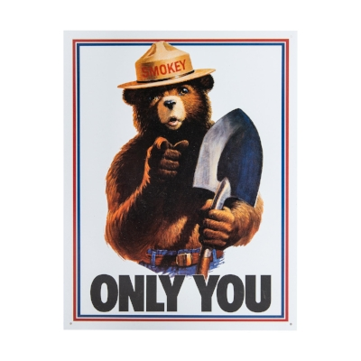 Only You Can Prevent Terrorist Attack!