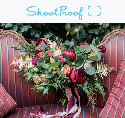 shootproof-casey-brodley-michigan-wedding-photographers.jpg
