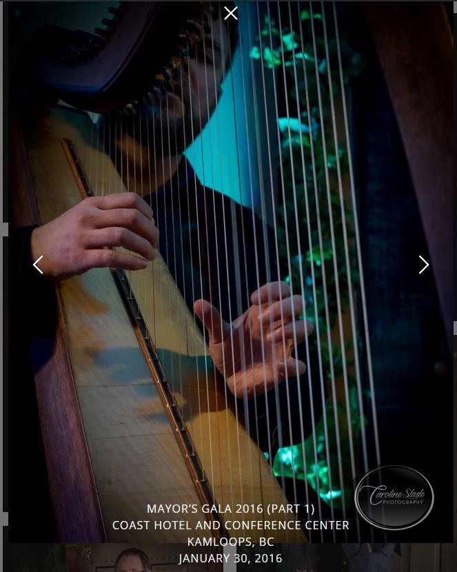 Neil harp Gala snip.JPG