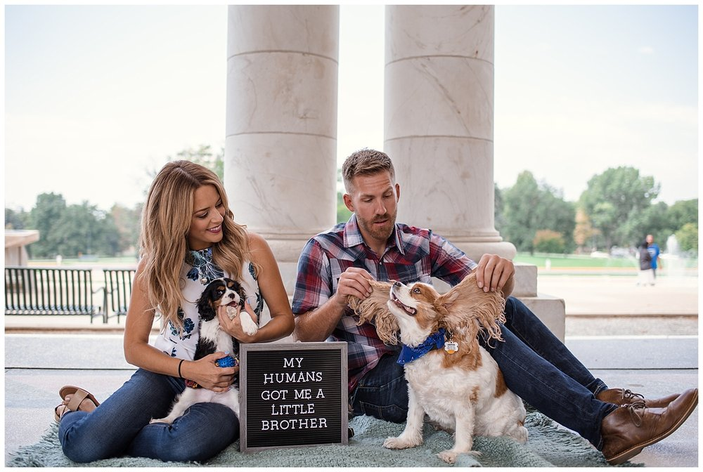 Denver Photographer, Colorado Photographer, Denver Family Photographer, Colorado Family Photographer, Cheesman Park, New Puppy, Denver Puppy, Colorado Wedding Photographer