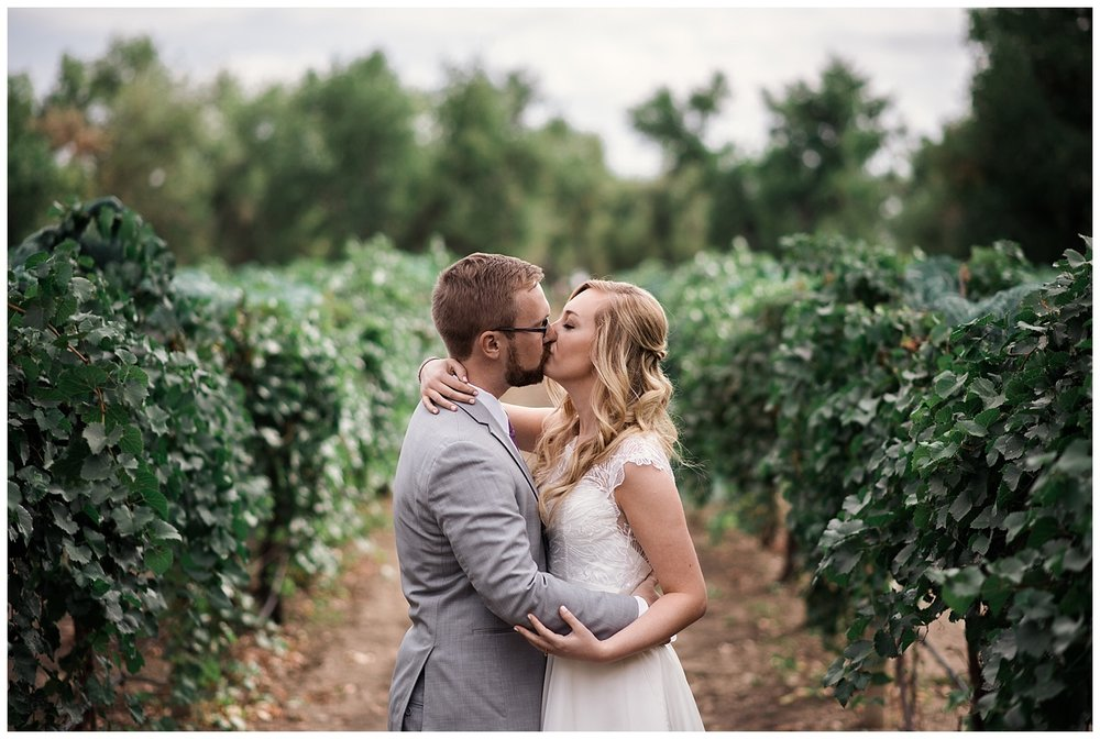 Vineyard wedding, colorado vineyard wedding, denver wedding photographer, colorado wedding photographer