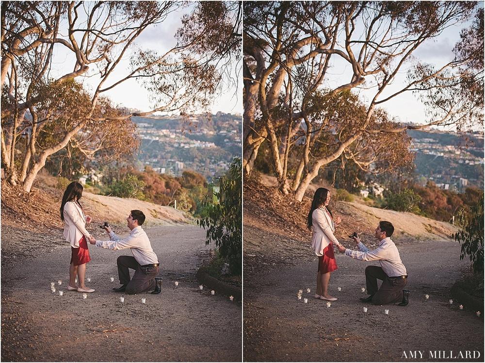 San Diego Proposal_0004.jpg