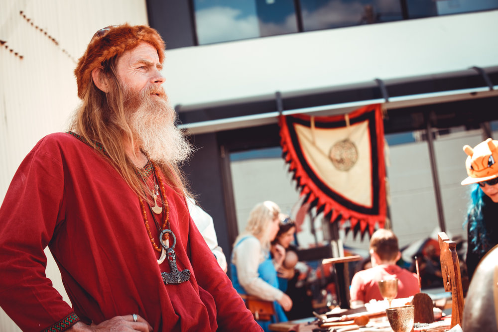 Saga Vikings .jpg