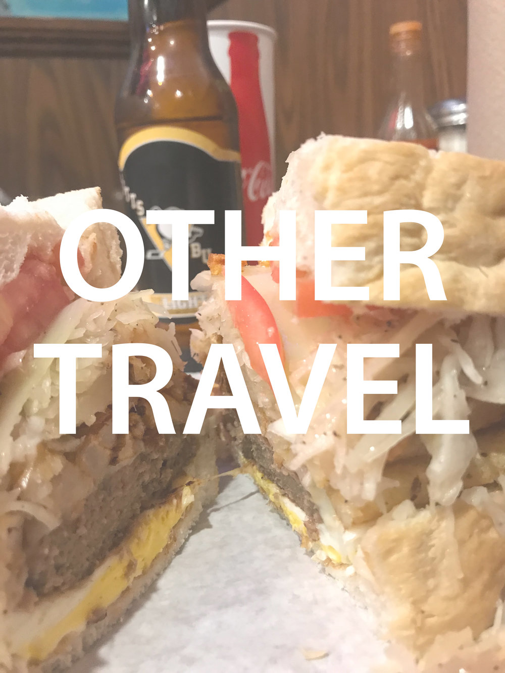 OTHER TRAVEL