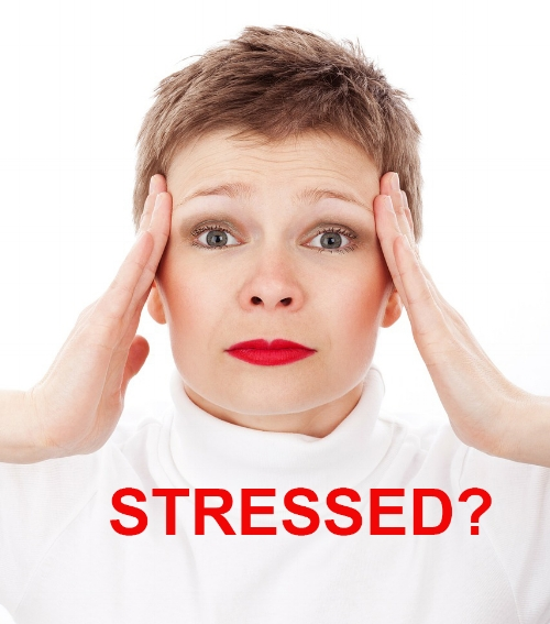 Stress is restructuring your brain.