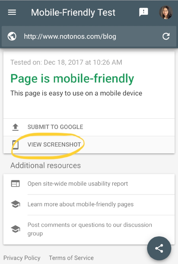 Google Mobile Friendly Test.jpg