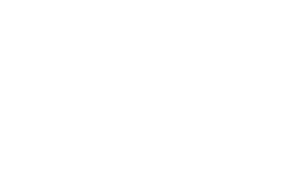 ADK 2016 OFFICIAL SELECTION WHITE.png