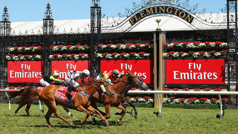 Emirates-Stakes-Day-2014.jpg