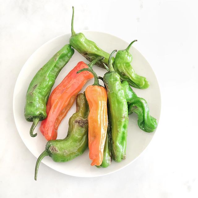 Do you like shishoto peppers🌶? I recently found them at my local farmers market👩🏻🌾. They are a delicious appetizer😋. You can bake or sauté them and serve them with a little sea salt💦. There is something very special about the peppers: while they are mostly mild, in almost every batch there is one that is super spicy🔥! . . I love discovering new foods at the markets🙌🏼. I always share my special finds on my IGTV📺. Have you seen my latest episode??☝🏻 . . #farmersmarketfinds #spicyfoods #healthyappetizer #foodfacts #shishotopeppers #funfood #foodie #farmersmarket #localfood #goodfoodgoodmood