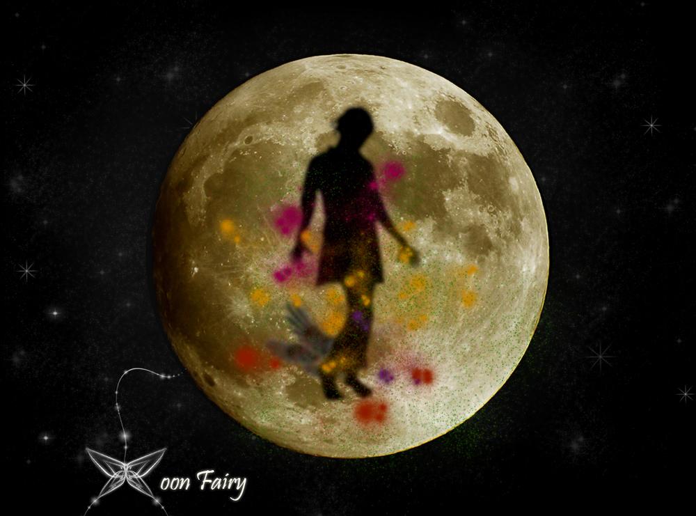 Moon Fairy Promotional2.jpg